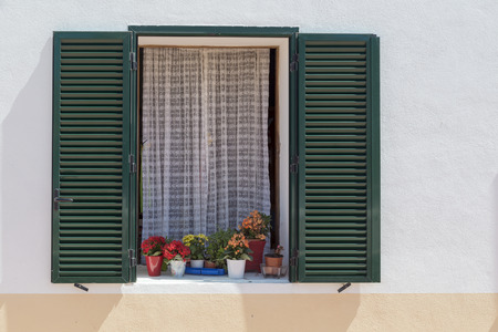 lattice window: green lattice window with flowerpots