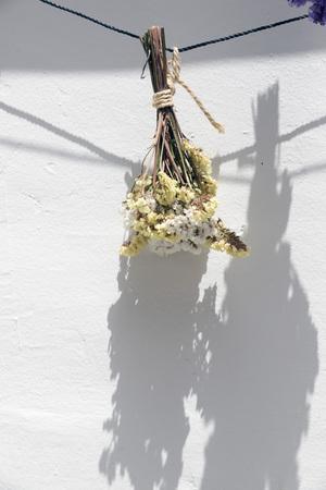 flores secas: ramo de flores secas que cuelgan en una cuerda