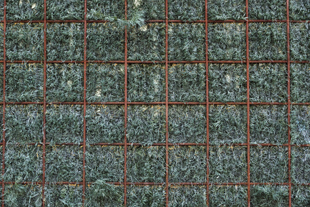 concealment: closeup of a grating background