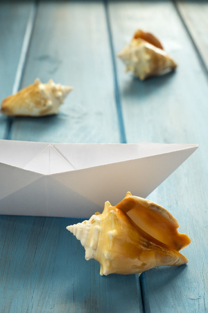 paper boat: Paper boat sailing between shells in a sea timber