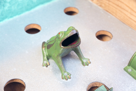 to toss: Traditional coin toss frog game