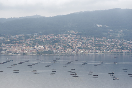 inlet bay: Platform of cultivation of mussel in Vigo, Galicia, Spain Stock Photo