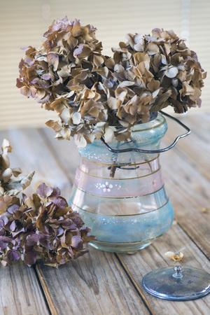 dried flower arrangement: dried hydrangea flowers in glass jar over wooden table Stock Photo
