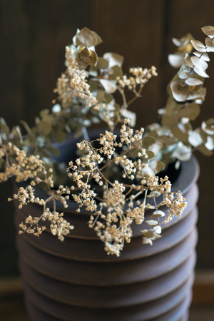 dried flowers: closeup of dried flowers in a vase Stock Photo
