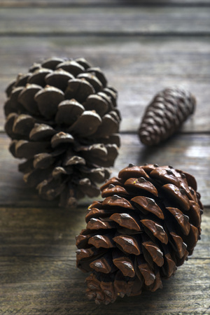pinecones: three pinecones on a wooden table Stock Photo