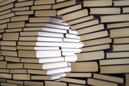 disclosure: an open window in a wall of books