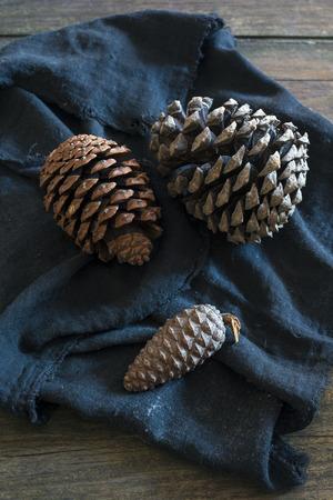 pinecones: three pinecones on dark cloth