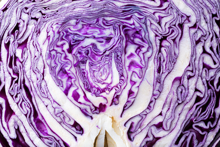 red cabbage: detail of slice of a red cabbage