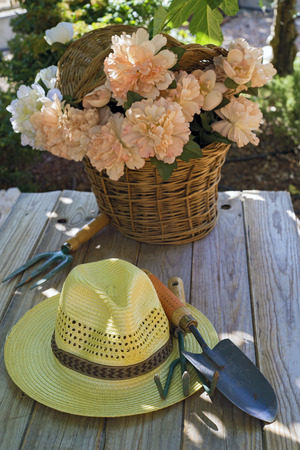 Basket of flowers, straw hat and gardening tools on wooden table Stock Photo
