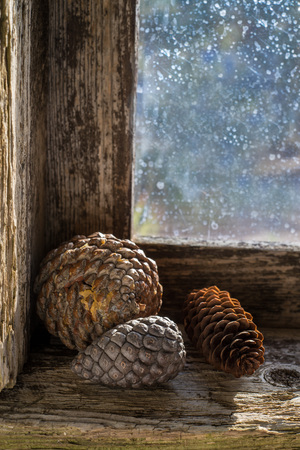 splintered: three pinecones and a candle on the windowsill of an old window