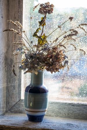 flores secas: jarrón con flores secas en el alféizar de una ventana Foto de archivo