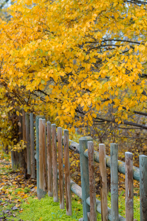 Wooden fence on a farm in autumn
