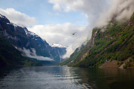 sognefjord: Navigating Sognefjord in Norway