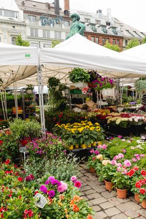 tent city: OSLO, NORWAY - JUNE 8, 2017: Flower market in Stortorvet Square