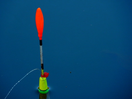 bobber: colorful fishing bobber in the water