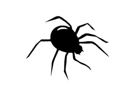 black spider on a white background, ilustration.