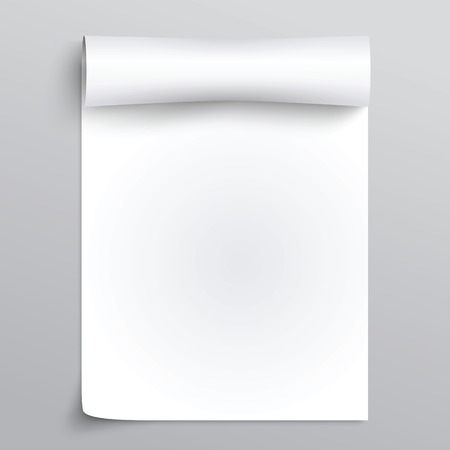 Vector White sheet of papyrus or paper  with curl