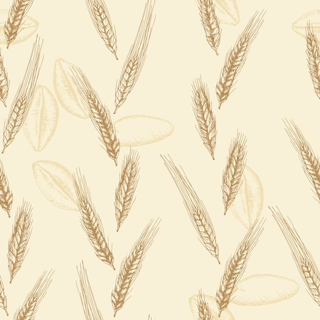 Hand drawn seamless vector wheat spikelets background Vector