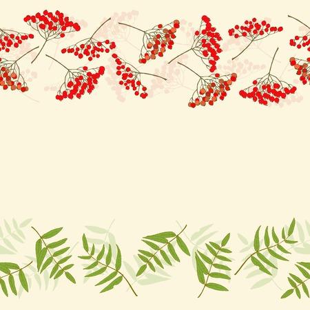 Rowan berry border