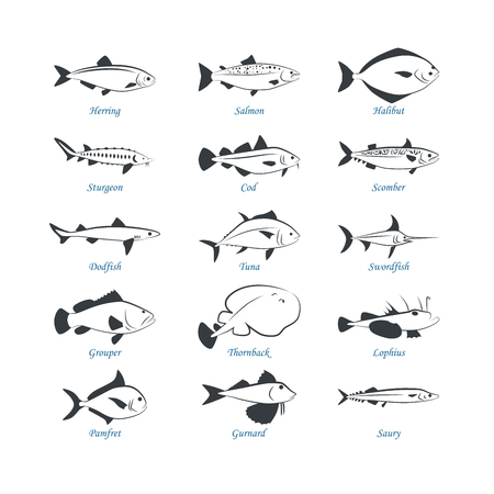 Seafood icons. Fish icons. Can be used for restaurants, menu design, internet pages design, in the fishing industry, commercial Illustration