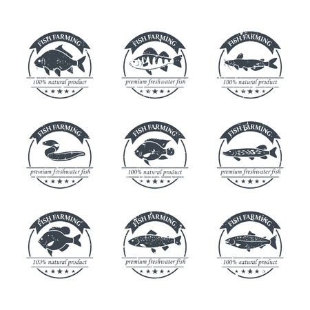 Ensemble parfait de la pisciculture. badges d'eau douce de poissons, des étiquettes et des éléments de conception. Peut être utilisé pour les restaurants, la conception de menu, la conception de pages Internet, dans l'industrie de la pêche, commercial