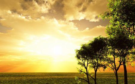 Beautiful sunset Stock Photo