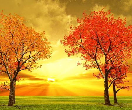 Autumn scenery Stock Photo