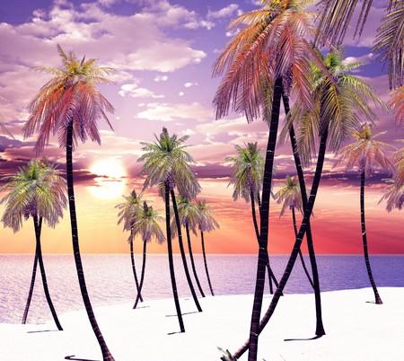 Dream island photo