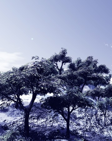 Beautiful winter landscape with trees photo