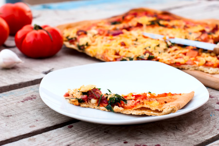 grated cheese: a thin piece of pizza with tomatoes, grated cheese and herbs on a plate