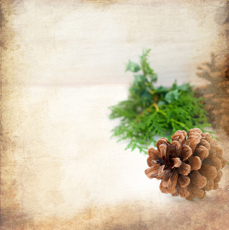page background: Christmas card with space for text decorated with cones and fir branches lying on a black wooden background Stock Photo