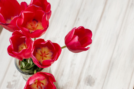red tulips: Spring flowers of beautiful red tulips in a vase top view