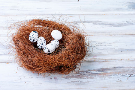Easter eggs in the nest. Easter holiday background. Space for text