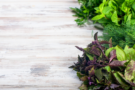 Organic fresh spicy herbs, mint, sprigs of basil, dill, parsley  on the white old wooden table Stock Photo