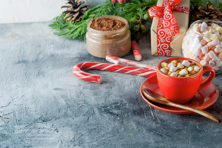 Red Cup of Homemade christmas hot chocolate,for Christmas and winter holidays  a fir tree branch, candy canes  and ginger biscuits on a wooden background. Holiday Concept,  copy space