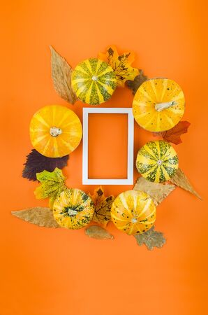 Decorative Mini raw pumpkins with fall dried leaves on orange paper background, autumn concept, copy space