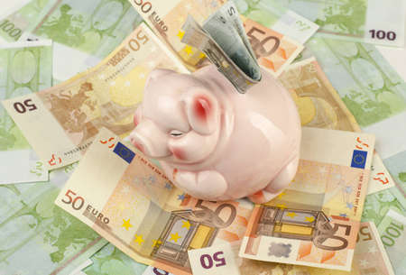 Image of pink piggy with euros photo