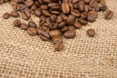 Image of coffee beans on cotton photo