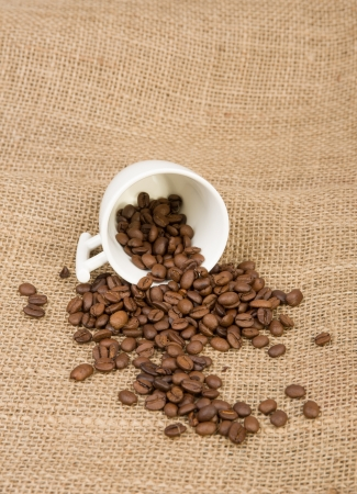 Image of coffee beans and cup photo