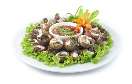 Steamed Spotted Babylon Blanching (Fresh Sea Babylonia Areolata Shell)  Boiled) Served with Spicy Seafood sauce Thai Food Style goodtasty decorate with vegetables and carved Carrot flower shape side view