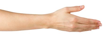 女性の手を提供するハンドシェイク ホワイト バック グラウンド、コピー領域パスをクリッピングに分離されました。女性の手を振ってのクローズ  写真素材