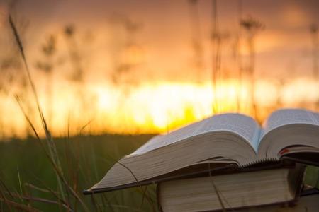ハードカバーの本日記、煽らぼやけて自然風景の背景、夏フィールド ライト付き夕焼け空に対して緑の草の上に横たわっているページを開いた。スペースを学校教育の背景にコピーします。 写真素材 - 50911488