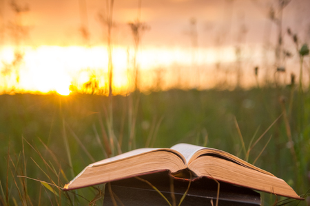 book stack: Opened hardback book diary, fanned pages on blurred nature landscape backdrop, lying in summer field on green grass against sunset sky with back light. Copy space, back to school education background.