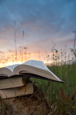 fanned: Opened hardback book diary, fanned pages on blurred nature landscape backdrop, lying in summer field on green grass against sunset sky with back light. Copy space, back to school education background.