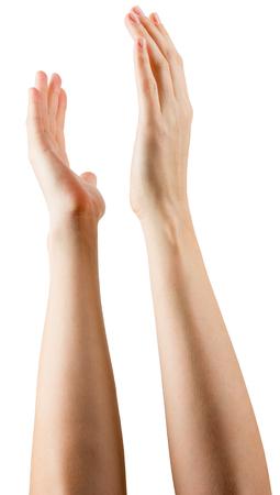 manos aplaudiendo: Grupo de las manos aplaudiendo sobre fondo blanco.