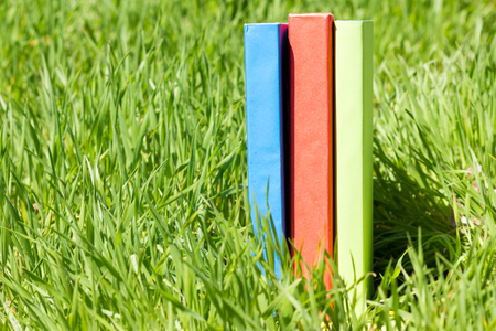 fanned: Summer spring backgound with stack of books and open book and bokeh. Back to school. Open book fanned pages. Copy Space