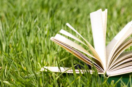 Sommer Frühling backgound mit Stapel Bücher und offenes Buch und Bokeh. Zurück zur Schule. Offenes Buch aufgelockerten Seiten. Textfreiraum