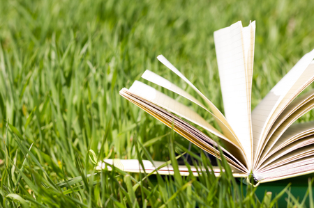 Summer spring backgound with stack of books and open book and bokeh. Back to school. Open book fanned pages. Copy Space