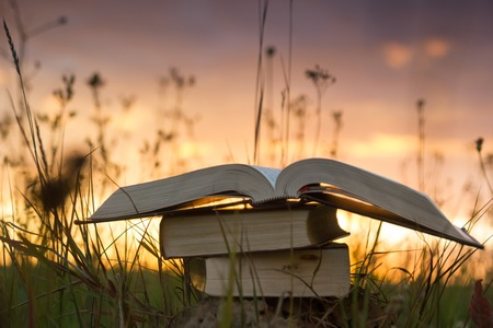 Opened hardback book diary, fanned pages on blurred nature landscape backdrop, lying in summer field on green grass against sunset sky with back light. Copy space, back to school education background.