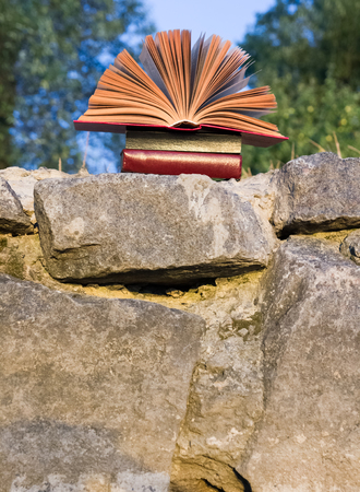 fanned: Opened hardback book diary, fanned pages on blurred nature landscape backdrop, lying in summer field on green grass. Books stacking. Copy space, back to school education background.
